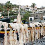 Stockfisch Madeira