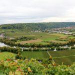 Weinschleife Mundelsheim