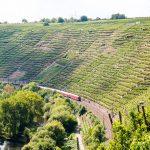 Württemberg steile Weinberge